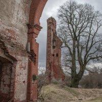 Руины старой лютеранской кирхи :: Игорь Вишняков