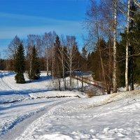 Дорожка к Славянке реке... :: Sergey Gordoff