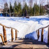 ГКЛ Холдоми! :: Ирина Антоновна