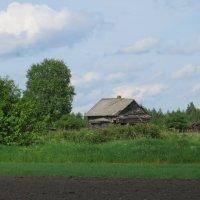 Бывшая деревня Герасимово. :: ВАЛЕНТИНА ИВАНОВА