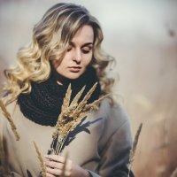 Осень :: Зинаида Дрим