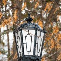 Фонарь в парке на фоне прошлогодней листвы :: Сергей Тагиров