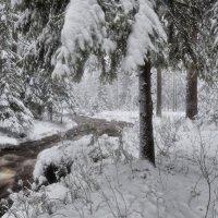 Весенний снегопад :: vladimir Bormotov