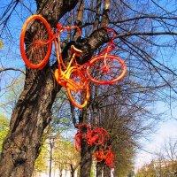 Весна :: Александр Михайлов