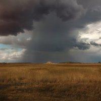 В поле дождь :: Оля Володина (Бурмистрова)