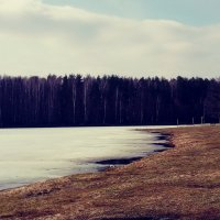 Весна идёт, весне дорогу :: Daria Zhdanova