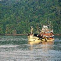 В заливах вокруг Phi-Phi-Don :: Наталья Тимофеева