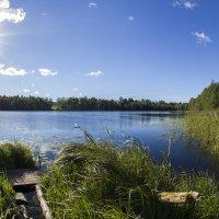 Озеро :: Serega