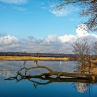 Река в разливе. :: Евгений Кузнецов