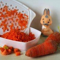 Ода морковке :: Татьяна Смоляниченко