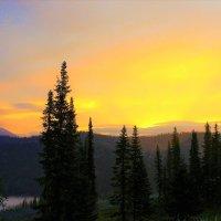 Золотистая зорька восхода :: Сергей Чиняев