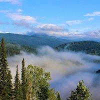Долину заполнил туман :: Сергей Чиняев