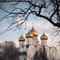 В начале весны, мартовская зарисовка :: Николай Белавин