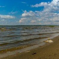 Ветра маленький каприз. :: Евгений Голубев