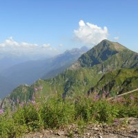 в горах :: dila *