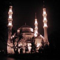 Ашхабад. Мечеть :: Elena Соломенцева