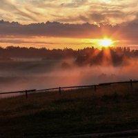 В лучах заходящего солнца.... :: Любовь Анищенко