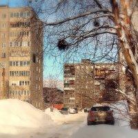 Родная улица моя... :: Анна Приходько