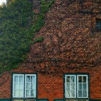 Голландский домик :: Tanja Gerster