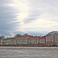 берег Университетской набережной :: Елена