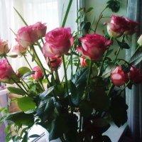 Букет роз :: татьяна