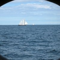 Опять кино про море... :: Ольга