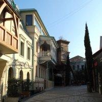 Тбилиси :: Alla Swan