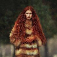 Red Winter | Liliya Nazarova :: Liliya Nazarova