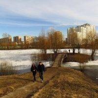 Опять весна на белом свете :: Андрей Лукьянов