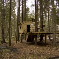 Лесной домик. :: Александр Кемпанен
