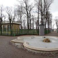 Весна в Летнем саду :: Наталия Короткова