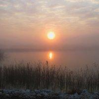Туман,туман седая пелена... :: Николай Волков