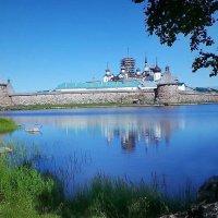 Соловецкий монастырь :: Клара