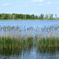 Озеро Чебаркуль... :: Дмитрий Петренко