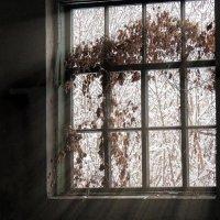 А за окном... :: Роман Савоцкий