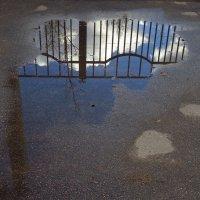 Надолго зимы уже не хватит (еще утром лежал свежий снег) :: Андрей Лукьянов