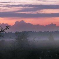 Полосы заката :: Лара Симонова