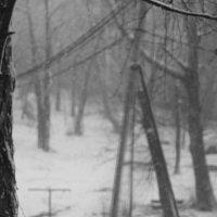 Зима в разгар весны :: Роман Никитин