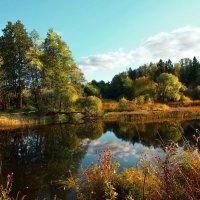 Стояла тёплая  погода :: Лара Симонова
