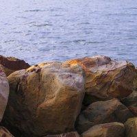 Море :: Лилия Кондратьева