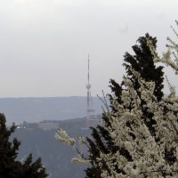 Мтацминда и весна :: Наталья Джикидзе (Берёзина)