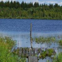 Плот на озере :: Лада Петрова
