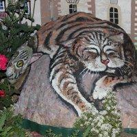 Рисунки на камнях :: Ираида Мишурко