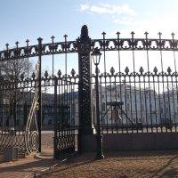 Чугунная ограда Смольного Собора :: Svetlana Lyaxovich