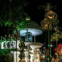 В вечернем парке атракционов :: Владимир Орлов