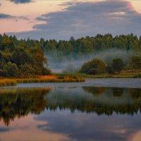 Вечерняя тишина... :: Александр Никитинский