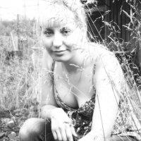 Аня :: liudmila drake