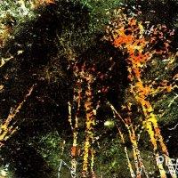 Ночь размывает контуры, черты :: Валерий Розенталь