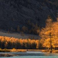 Осень на Алтае :: Влад Соколовский