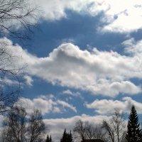 Облака , белогривые лошадки ! :: Мила Бовкун